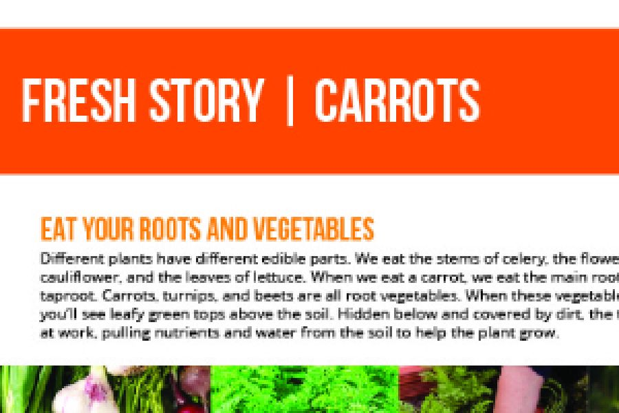 2020 Fresh Story - Carrots - Primary